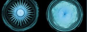 Η τονικότητα της συμπαντικής αρμονίας – 432Hz