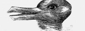 Tεστ: εσείς βλέπετε πάπια ή κουνέλι;