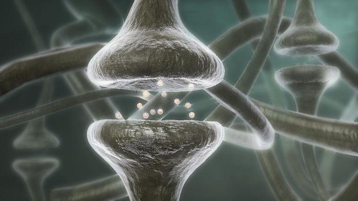 Αποτέλεσμα εικόνας για Η σκέψη αλλάζει τη χημεία του σώματος