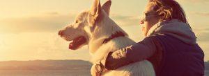 Οι σκύλοι συγχρονίζουν τους χτύπους της καρδιάς τους με τη δική μας