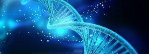 Βιταμίνες που προστατεύουν και επιδιορθώνουν το DNA προστατεύοντάς μας από πλήθος ασθενειών, επιβραδύνοντας τη γήρανση
