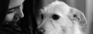Ένας σκύλος σε μαθαίνει ν' αγαπάς