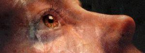 10 σημάδια ότι η ψυχή σας βιώνει πνευματικό θάνατο (και αναγέννηση)