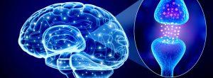 10 τρόποι για να αυξήσετε τα επίπεδα σεροτονίνης (ορμόνη της χαράς) χωρίς φάρμακα