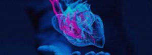 Πώς να αρχίσετε να σκέφτεστε με την καρδιά σας