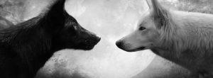 O μύθος των Τσερόκι για τους δύο λύκους ή τις εσωτερικές μας δυνάμεις